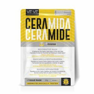 Diet Esthetic Ceramide Obnovující hydratační pleťová maska 20 g