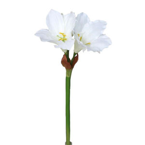 Umělá Amarylis bílá, 52 cm